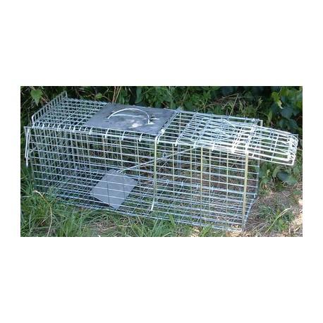 Piège 1 entré pliable 94cm galvanisé pour chat, raton laveur