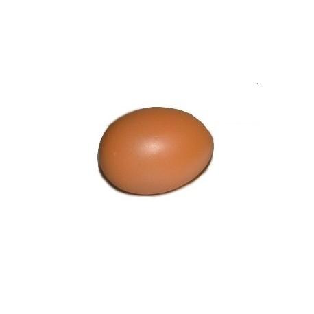 Oeuf de poule brun en plâtre