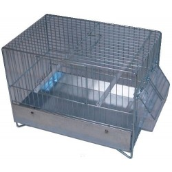 Cage canaris chant galvanisée