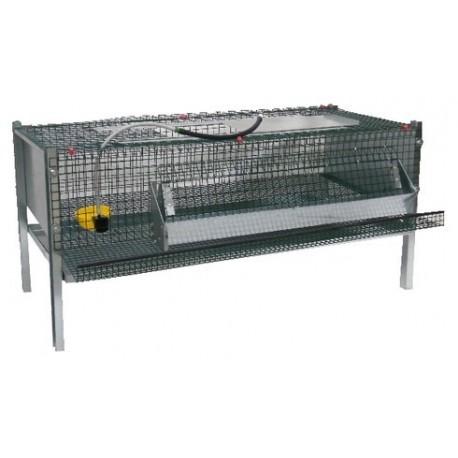 Cage caille avec abreuvoir automatique