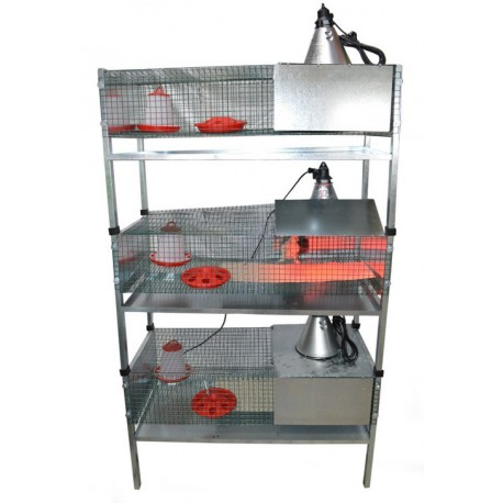 Batterie cages éleveuses avec reflecteur  TRANSPORT OFFERT