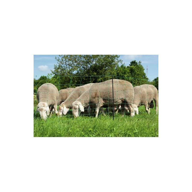 filet mouton double pointe ovinet vert 90cm tsp offert. Black Bedroom Furniture Sets. Home Design Ideas