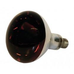 Ampoule Infrarouge verre trempé - 250W