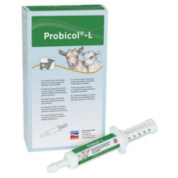 Probicol-L - seringue 20ml