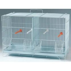 Cage reproduction oiseaux