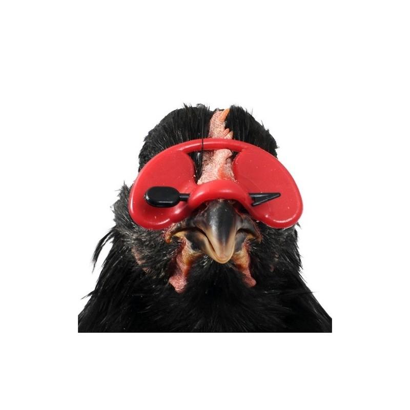 images détaillées en présentant mieux aimé Lunette anti-picage poule ronde