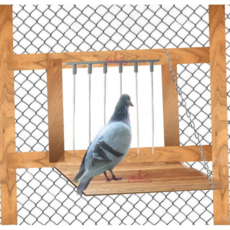 clapette pour spoutnik pigeon la ferme de manon. Black Bedroom Furniture Sets. Home Design Ideas