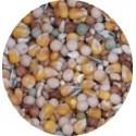 Mélange grains Pigeons 4 saisons- Sac de 3kg