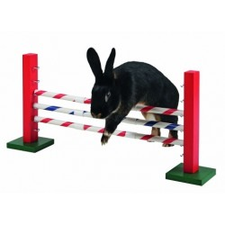 Agility Obstacle - JEU pour lapin