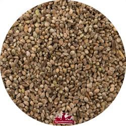 Chanvre-Chenevis petit - Sac de 3kg
