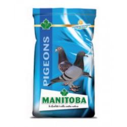 """Mélange grains Pigeons """"ENERGY"""" avec extrudés - Sac de 3kg"""