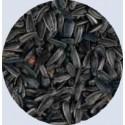 "Graine de tournesol noir ""Piccolo nero"" - Sac de 3kg"