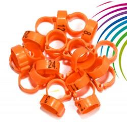 Bagues à clip numérotées 8mm - de 26 à 50 - Lot de 25