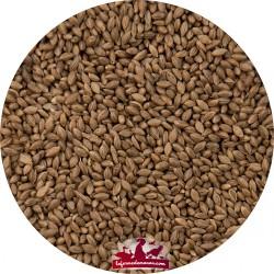Foniopaddy - Foniogold - Sac de 3kg