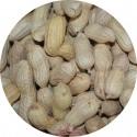 Arachide non décortiqué - Sac de 1kg