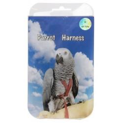 Harnais grande perruche, perroquet - Différente taille