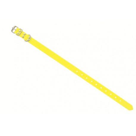 Collier PVC fluo pour chien 60cm x 2.5cm