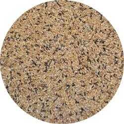 Canaris T3 PLATINO avec perilla blanc - Sac de 3kg