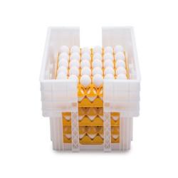 Caisse plastique 180 oeufs (6 alvéoles de 30 oeufs)