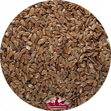 Graine de Lin - Sac de 20kg