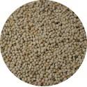 Graine de Périlla blanc - 1kg