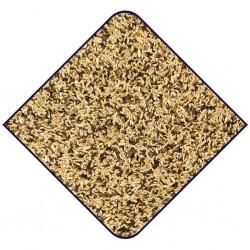 graine chardonneret - mélange de graine pour oiseaux indigènes - versele laga prestige - european finches prestige