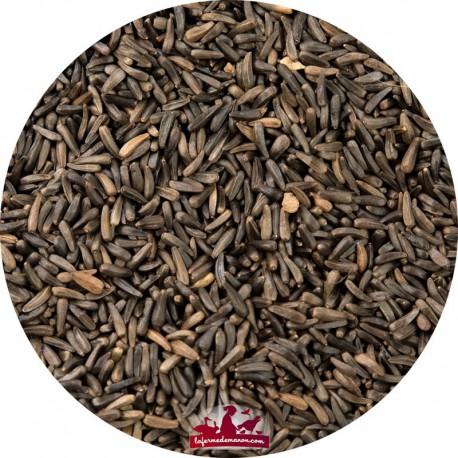 Graines niger EXPERT- 18kg