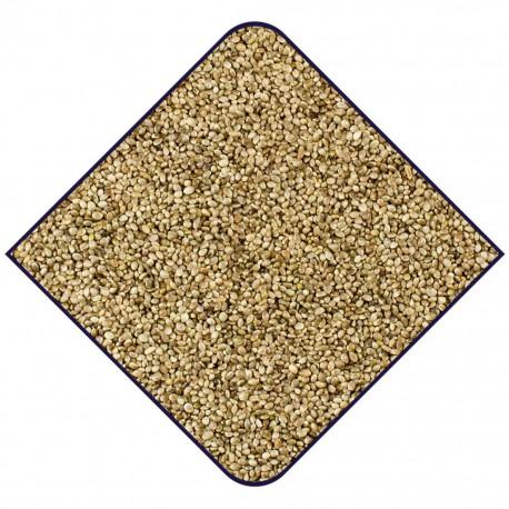 Graines de chanvre EXPERT- 15kg