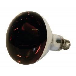 Ampoule infrarouge verre trempé - 150W