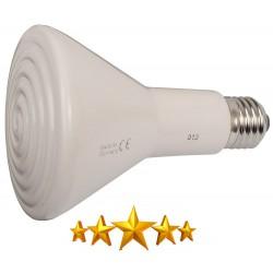 Ampoule porcelaine chauffante 250W - ELSTEIN