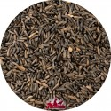Graines niger EXPERT- 3kg