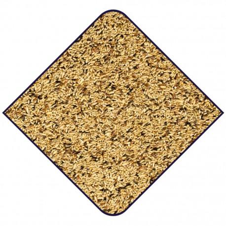 Graines Sauvages EXPERT - Sac de 3kg