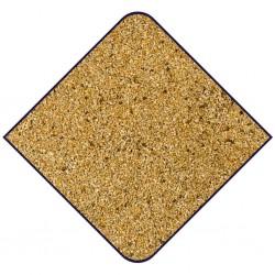 Mélange gould - graines au détail pour oiseaux - grossiste graines oiseaux - apv goulds - graines exotique - oiseaux exotique