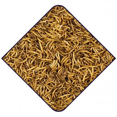Vers de farine séchés - 300g