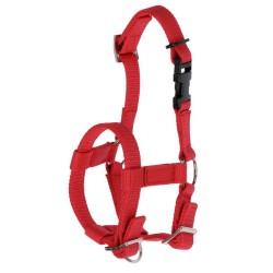 Licol nylon pour Alpaga rouge réglable