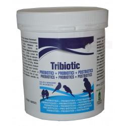 TRIBIOTIC - Prébiotiques + Probiotiques + Postbiotiques