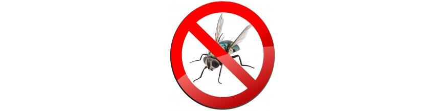 Piège à insectes