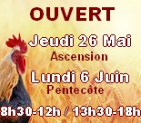 Animaux disponibles